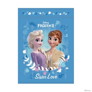 ディズニー アナと雪の女王2 お昼寝ケット シスターズブルー柄 [No.2125018400]|シブヤ文具