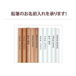 かきかた鉛筆・色鉛筆 お名前入れ決済用 1商品につき100円<鉛筆は別途ご購入> [M便 1/1]