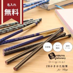 シブヤオリジナルかきかた鉛筆 2B 12本組 恐竜柄 2カラー so-tp011 〔シブヤオリジナル〕|net-shibuya