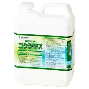 屋外用コケ除去剤・抑制剤 コケシラズ 4L netdesimamoto