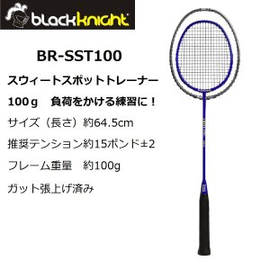 blackknight BR-SST100 ブラックナイト スウィートスポットトレーナー100g Sweet Spot Trainer netintm