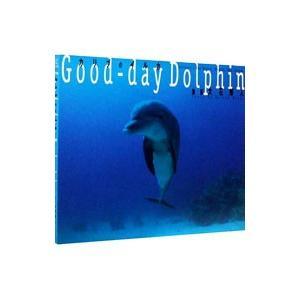 カリブのイルカ Good‐day Dolphin /大石博人【撮影】