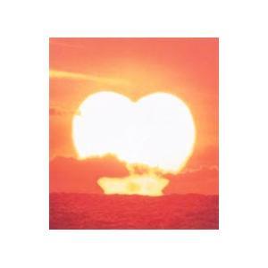 サザンオールスターズ/バラッド3〜the album of LOVE|netoff