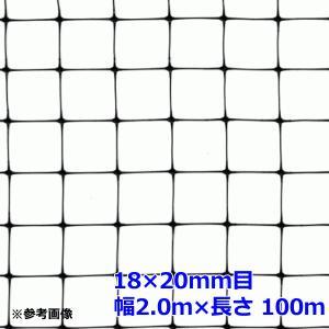 バードネット 目合18×20mm (幅2m×長さ100m) 紙管入 小動物対策用ネット コンウェッドネット netonya