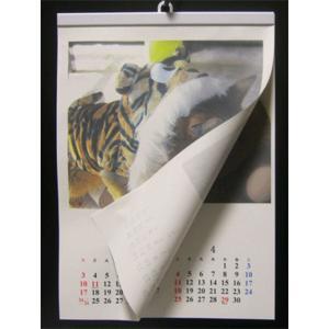 カレンダーハンガー 手作りカレンダー用ハンガーA3用紙縦用-19mm|netpetshal