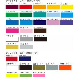 猫(ねこ)ちゃん用迷子札にもなる26カラーカラー netpetshal 02