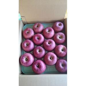 サンふじ 福島産 りんご 1箱 約10kg(36玉) 送料無料|netsu-kajyu