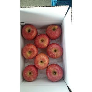 サンふじ 福島産 りんご 1箱 約3kg 小玉(12、13玉) 送料無料 netsu-kajyu
