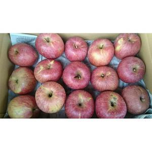 訳あり サンふじ 福島産 りんご 1箱 約10kg 家庭用 送料無料|netsu-kajyu