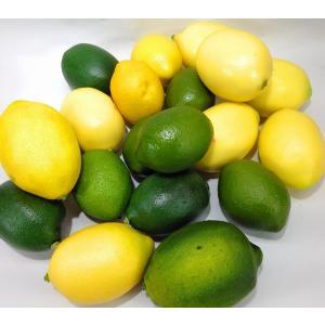訳あり 食品サンプル レモン 20個セット (イエロー×グリーン)