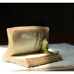 置物 古書に挟まる生き物 アンティーク風 (カエル)|neustadt