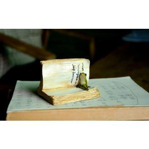置物 古書に挟まる生き物 アンティーク風 (カエル)|neustadt|03