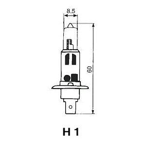 FOCUS 自動車用電球 ハロゲンバルブ 【H1】 【12V100W】 F11 newfrontier