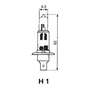 FOCUS 自動車用電球 ハロゲンバルブ 【H1】 【24V70W】 F15 newfrontier