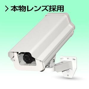 ダミーカメラ 本物レンズ付ダミー防犯カメラ|nextage