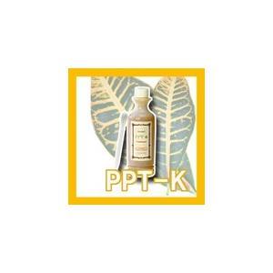 PPT-Kトリートメント 300ml エポーラル 中央有機科学 DDD GB2257_mother (10002486) プロ用美容室専門店 プチギフト、プレゼントにも トリートメント|nextbeauty