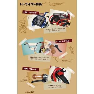 自転車 三輪車 子供 男の子 女の子  a.n.d TRIC トライク a.n.design works カンタン組立|nextbike|06