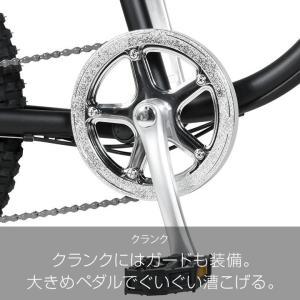 10%OFFクーポン!カギ&ライトプレゼント  a.n.design works  Baboon バブーン Caringbah 自転車 20インチ 6段変速 BMX 前後 フルサスペンション カンタン組立|nextbike|10