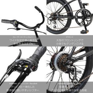 自転車 ビーチクルーザー 20インチ Beetle ビートル Caringbah a.n.design works 99%組立 nextbike 04