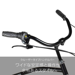 自転車 ビーチクルーザー 20インチ Beetle ビートル Caringbah a.n.design works 99%組立 nextbike 06