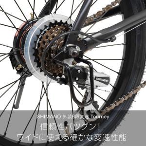 自転車 ビーチクルーザー 20インチ Beetle ビートル Caringbah a.n.design works 99%組立 nextbike 09