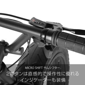 ファットバイク 20インチ 自転車 ディスクブレーキ 7段変速  Devoo207 a.n.design works アウトレット99%組立|nextbike|10