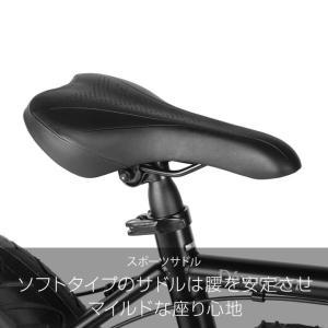 ファットバイク 20インチ 自転車 ディスクブレーキ 7段変速  Devoo207 a.n.design works アウトレット99%組立|nextbike|12