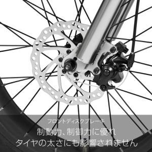 ファットバイク 20インチ 自転車 ディスクブレーキ 7段変速  Devoo207 a.n.design works アウトレット99%組立|nextbike|06