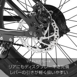 ファットバイク 20インチ 自転車 ディスクブレーキ 7段変速  Devoo207 a.n.design works アウトレット99%組立|nextbike|07