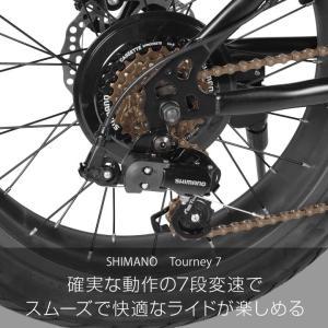 ファットバイク 20インチ 自転車 ディスクブレーキ 7段変速  Devoo207 a.n.design works アウトレット99%組立|nextbike|08