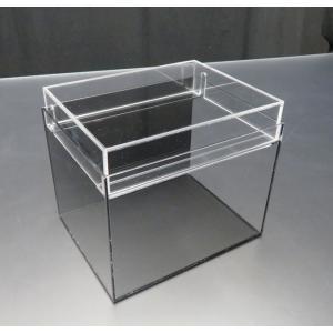 小型展示水槽 幅20cm×奥行16cm×高さ17cm 底・バック黒マット|nexxtshop