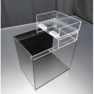 小型展示水槽 幅25cm×奥行18cm×高さ25cm 底・バック黒マット|nexxtshop