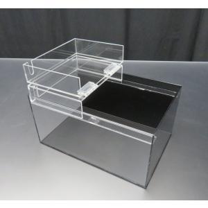 小型展示水槽 幅30cm×奥行20cm×高さ17cm 底・黒マット|nexxtshop