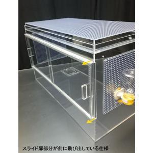 スライド扉のゴールデンハムスターケージ 箱型フタ|nexxtshop