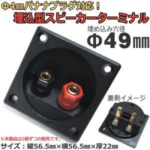 埋込型スピーカーターミナル [取り付け穴径Φ49mm/Φ4mmバナナプラグ対応]|nfj