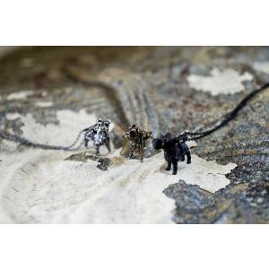 お散歩 シュナウザー ネックレス 犬 いぬ アニマルネックレス ペンダント チェーン付 雑貨 グッズ|nfw