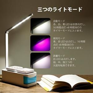【更新されたLEDモードで、光を十分に与える】5個の赤LED、2個の青LEDと10個の白LEDを装備...