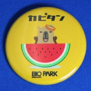【ネコポス可】カピタン缶バッジ(スイカ)|ngsbiopark-amigos