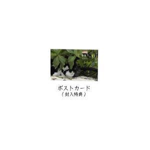 岩合光昭の世界ネコ歩き 第5弾 ブルーレイ 全3枚セット 【NHK DVD公式】|nhkgoods|03