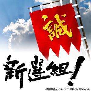 大河ドラマ 新選組! 完全版 全2巻セット DVD【NHK DVD公式】