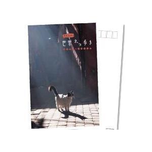 岩合光昭の世界ネコ歩き モロッコ・マラケシュ DVD 【NHK DVD公式】|nhkgoods|02