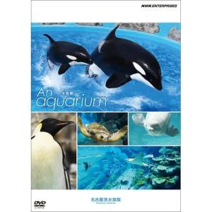 An Aquarium −水族館− 名古屋港水族館