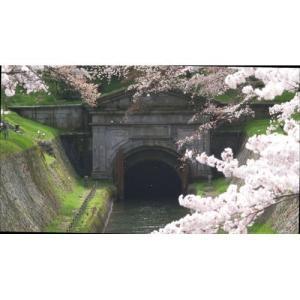 新・京都百景 〜達人流 学びの旅〜 春・夏編 DVD DVD 【NHK DVD公式】|nhkgoods|05
