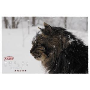 岩合光昭の世界ネコ歩き スペシャル 津軽の四季 ブルーレイ 【NHK DVD公式】|nhkgoods|02
