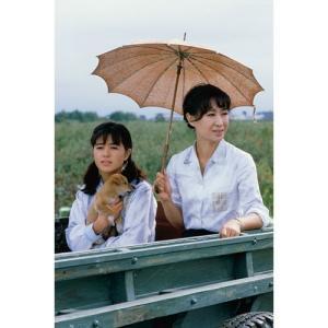 大河ドラマ いのち 完全版 DVD全2巻セット【NHK DVD公式】|nhkgoods|04