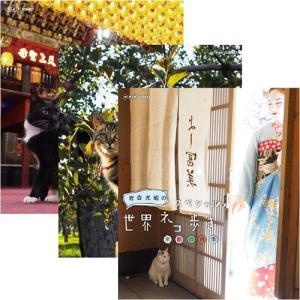 岩合光昭の世界ネコ歩き ブルーレイ全28巻セット BD