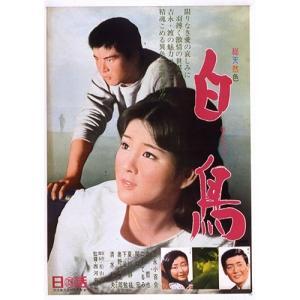 映画 白鳥 DVD【NHK DVD公式】