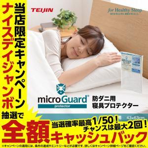 ミクロガード(R)防ダニ用 寝具プロテクター まくら用(43×63cm)|niceday