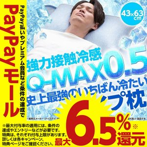 パイプ枕 ひんやり  史上最強のいちばん冷たい クール 快眠 パイプまくら Q-MAX0.5 強力接触冷感 冷却マクラ 夏物 洗える 43×63cm  選べる10色|niceday