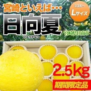 日向夏2.5kg Lサイズ 13〜15玉 宮崎県日南市直送|nichinan-tv